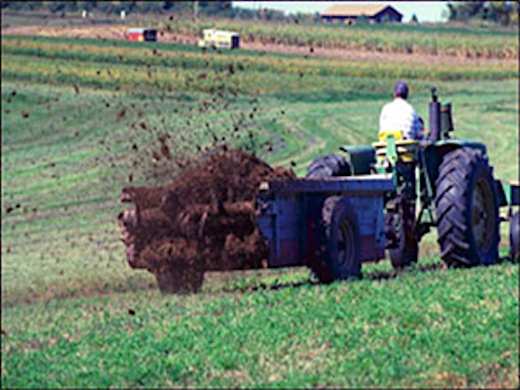 manure-spreading